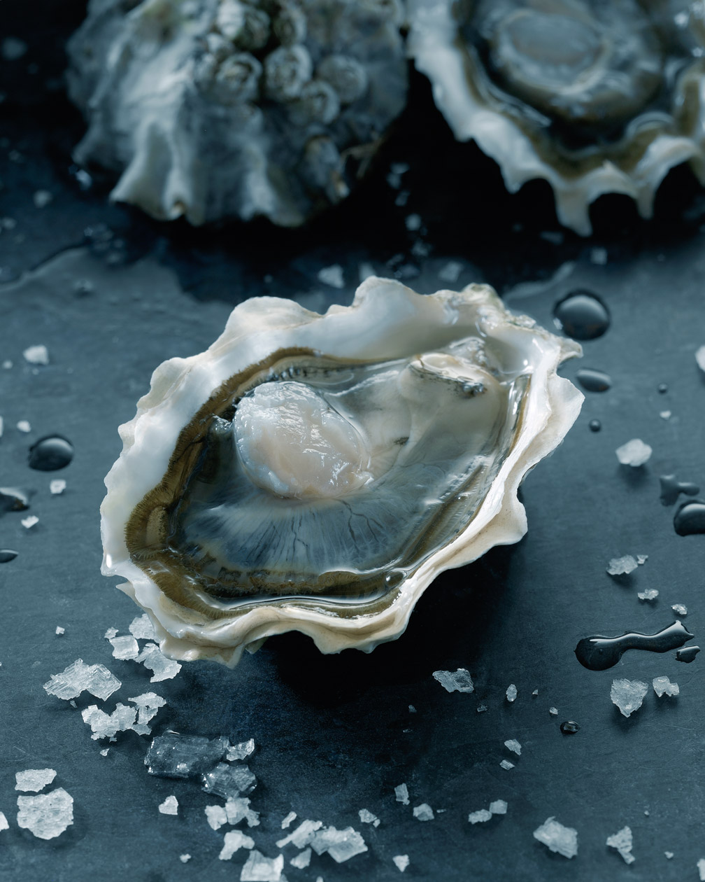 1-SHUCKED_OYSTER_WEB